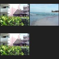 Barbados April, an album of Alan Clifford's photographs