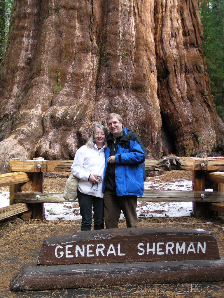 Margaret, Alan and the General Sherman tree